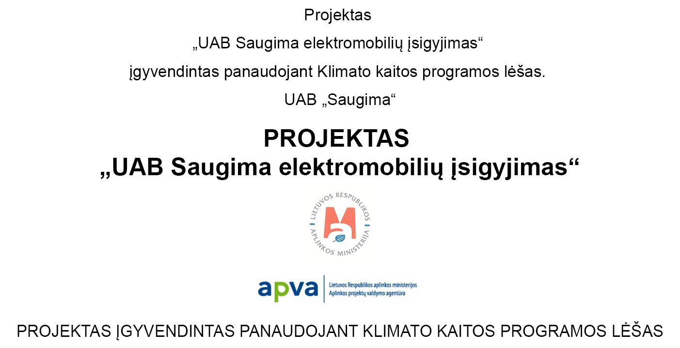 Elektromobili%C5%B3_projekto_maketas.jpg